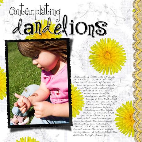 B_contemplating_dandelionsjpglr